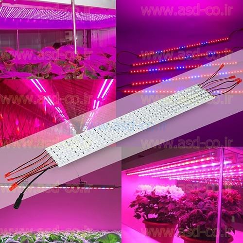 قیمت ال ای دی گلخانه با توجه به توان چراغ یا ماژول و طول موج ساطع شده از آن متفاوت بوده و قیمت انواع لامپ رشد گیاه در این مجموعه ارزان ترین قیمت در بازار می باشد.