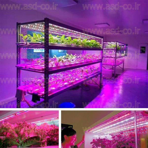لامپ ال ای دی گلخانه طول موج هایی که برای فتوسنتز گیاهان مورد نیاز باشد را به صورت کامل ساطع می کند و به لامپ رشد گیاه که تمام طیف ها را داشته باشد؛ فول اسپکتروم می گویند.